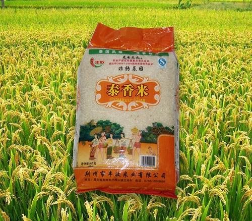 稻米的种植技术步骤
