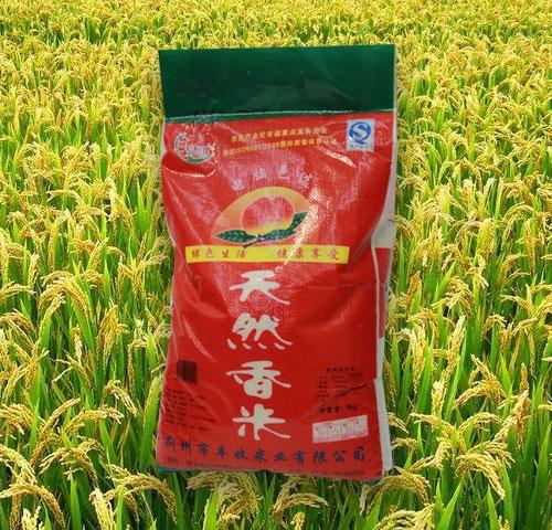 运城天然香米
